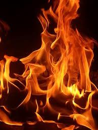 PKSの発熱量は4000kcal/kg以上